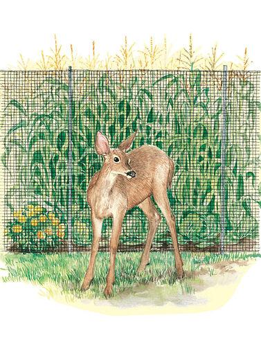 Heavy-Duty Deer Fence
