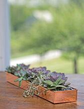 "Rectangular Copper Plant Tray, 24""x 5"""