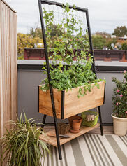 Apex Trellis Planter