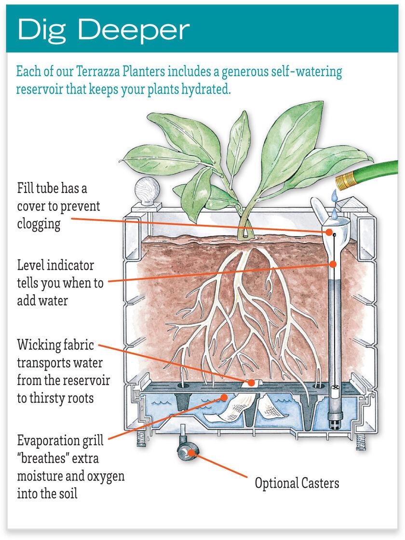 Self-Watering Terrazza Trough Planters | Gardener's Supply