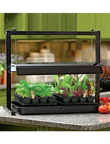 Compact Tabletop SunLite® Garden