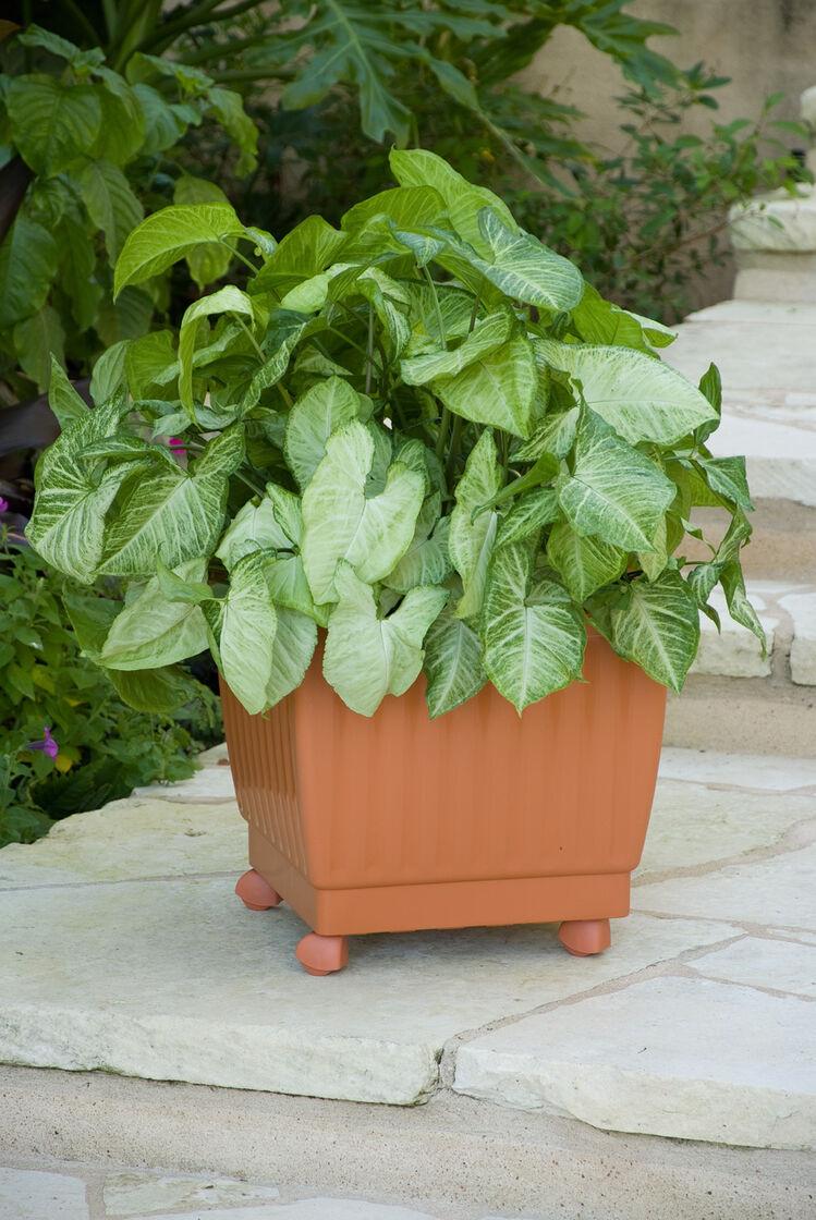 Self watering rolling planter 17 gardeners supply autos post for Gardeners supply burlington
