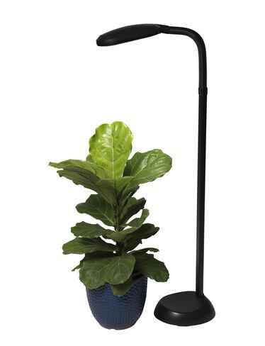 Cfl Grow Light Full Spectrum Floor Lamp Gardener 39 S Supply