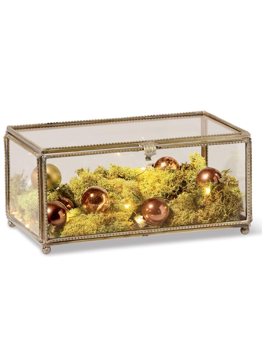 Glass Display Box Glass Treasure Box Small Brass And