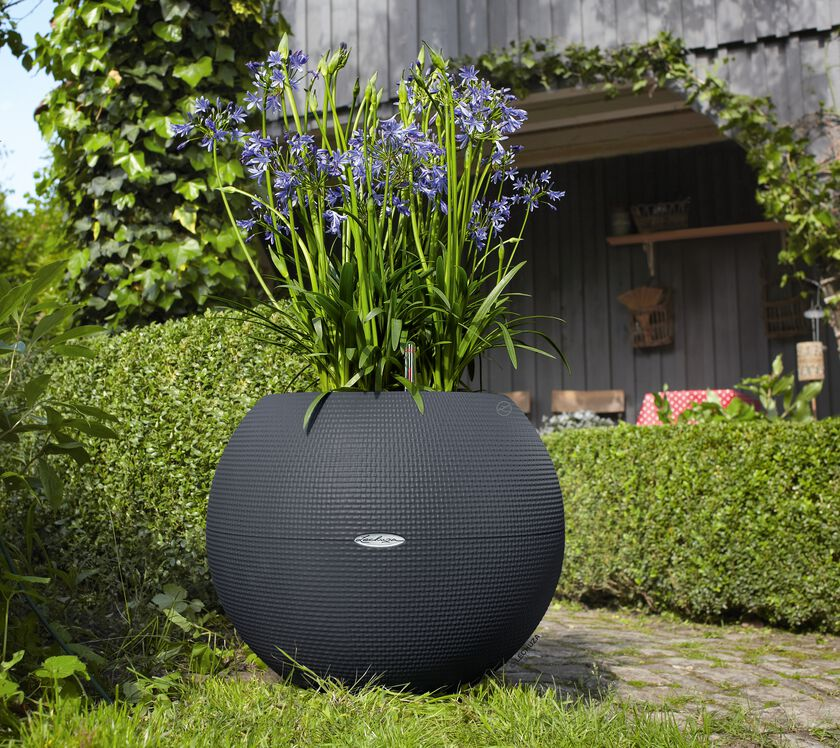 large sphere planter puro 50 self watering pot