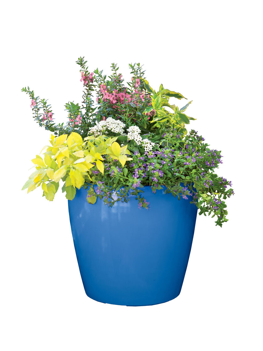 Large Flower Pots Plastic Rolling Viva Self Watering