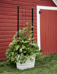 Gardener's Revolution® Classic Vine Planter