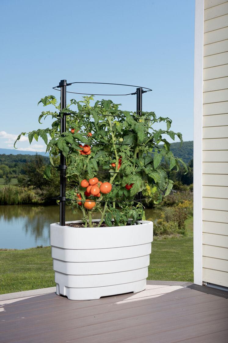 Gardener 39 s revolution classic tomato planter for Www gardners com