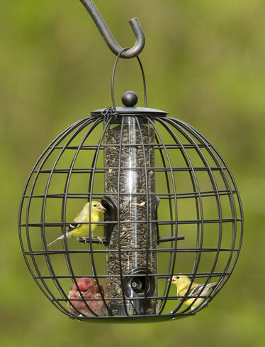 Mixed Seed Globe Cage Feeder