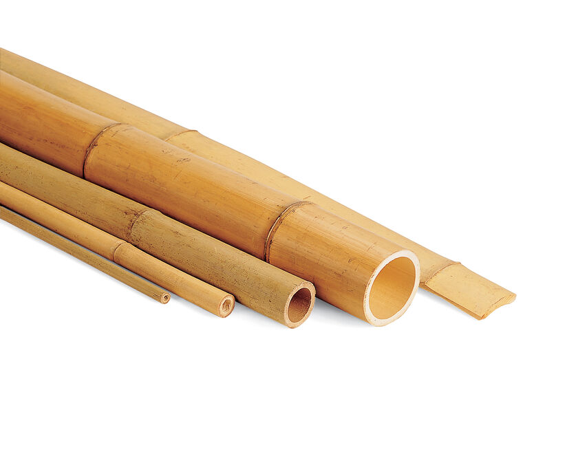Where To Find Bamboo Poles ~ Bamboo poles stakes sticks gardeners