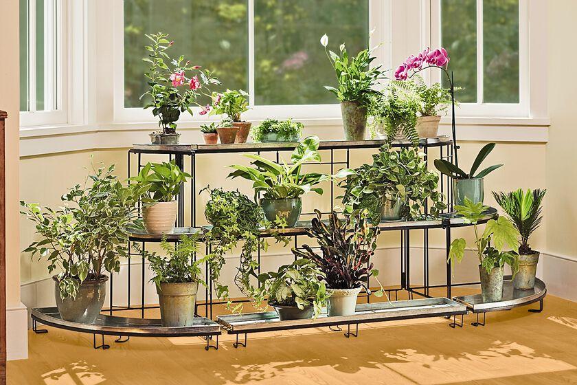 straight plant terrace plant stands gardener 39 s supply. Black Bedroom Furniture Sets. Home Design Ideas