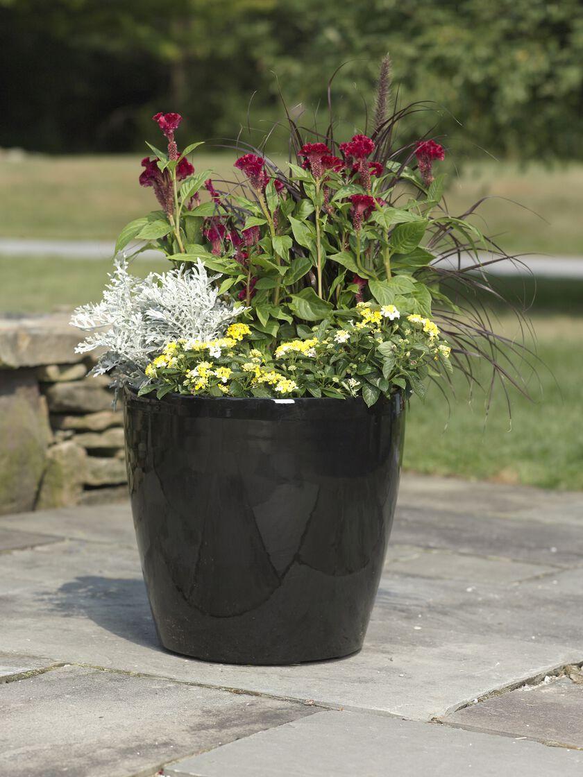 Large Flower Pots Plastic Rolling Viva Self Watering