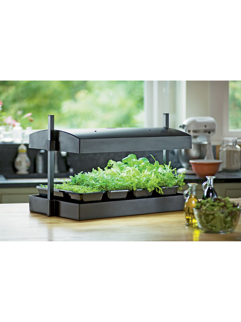 Indoor herb garden kit my greens light garden gardener for Indoor gardening kit