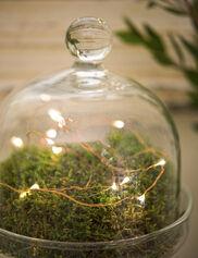 *Fairy Light String, 5 ft.