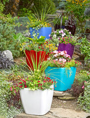 Viva Self-Watering Rolling Planter, Square Large