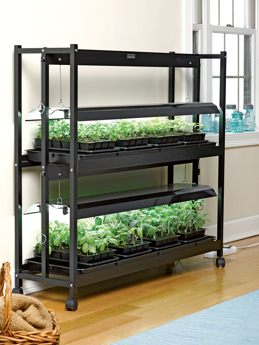 Grow Light Stand 2 Tier Sunlite 174 Garden Amp T 5 Bulbs