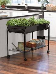 Mobile Salad Garden