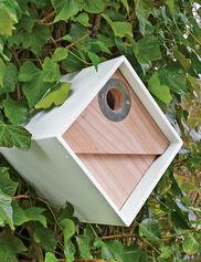 Urban Birdhouse