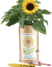 Sunflower Garden in a Bag Kids' Kit
