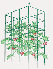 Cage Extension for Tomato Success Kit