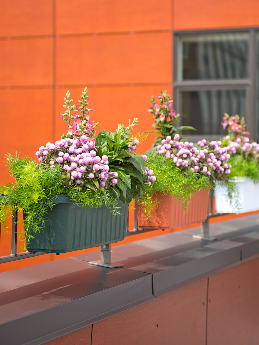 railing planters 24 accommodate 1 to thick deck railings. Black Bedroom Furniture Sets. Home Design Ideas