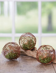 Mini Air Plant Geo Balls, Set of 3