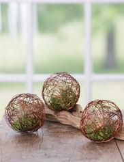 Mini Air Plant Geo Balls, Set of 3