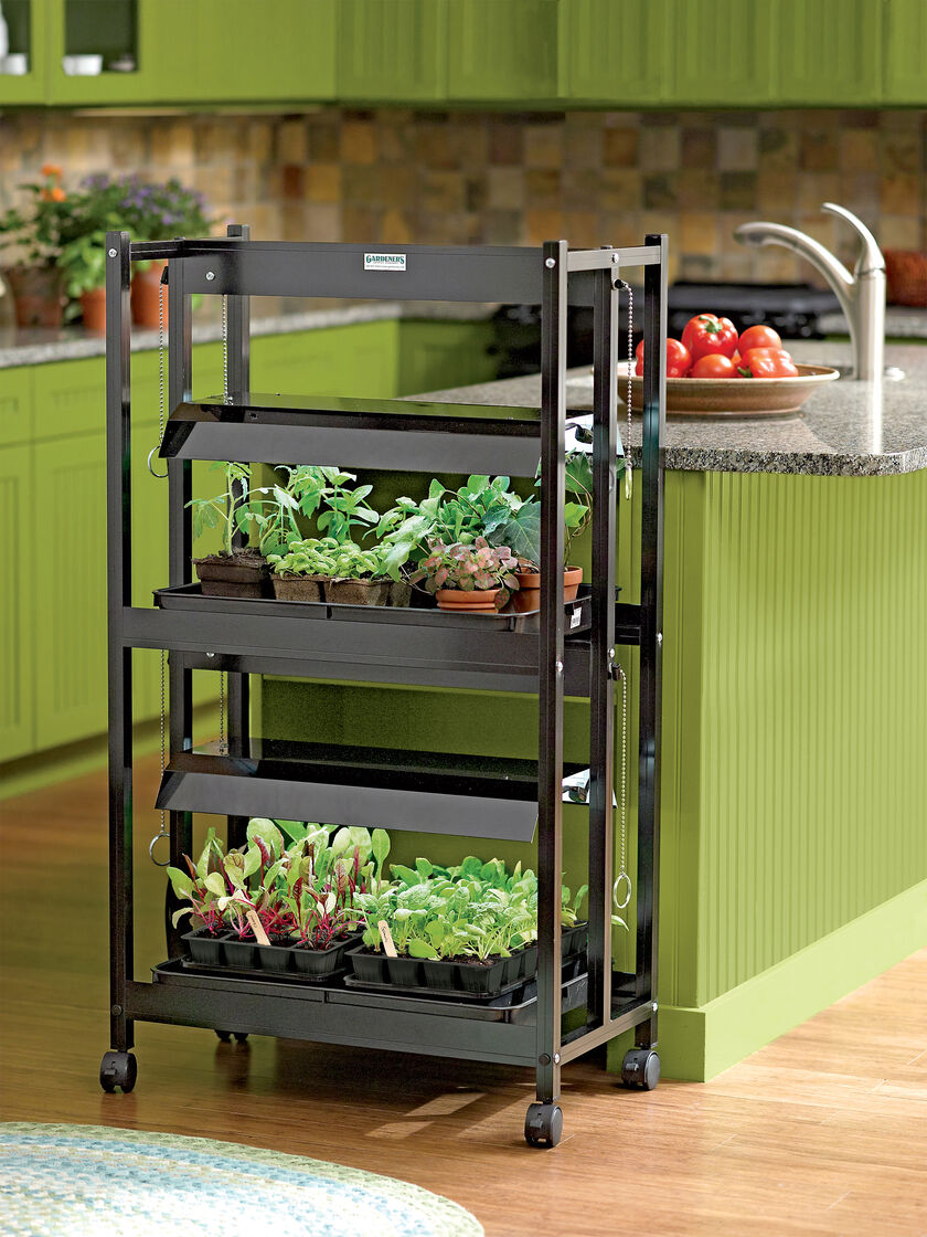 Plant Grow Lights With Two Shelves Gardener S Supply