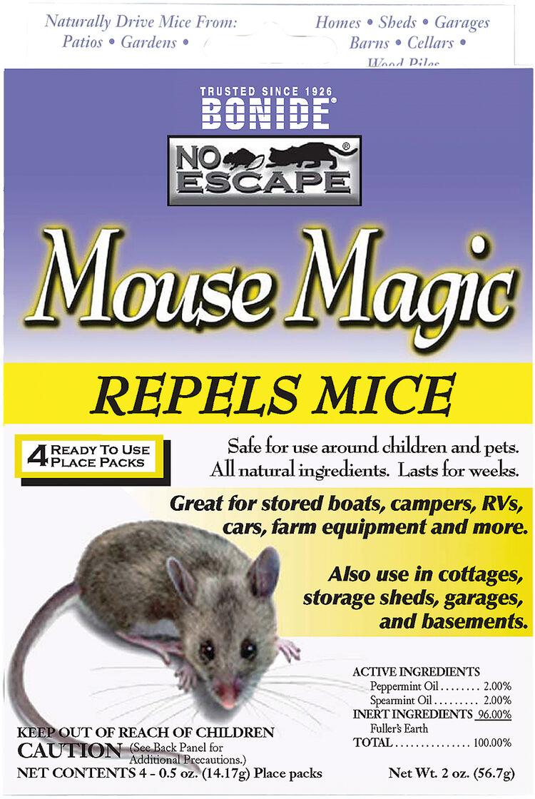 how to keep rats away naturally