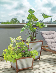 Galvanized Self-Watering Planters
