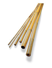 Bamboo Poles & Bamboo Stakes