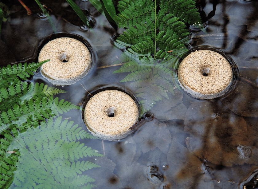 Mosquito Control Rings For Ponds Birdbaths Gardener 39 S Supply