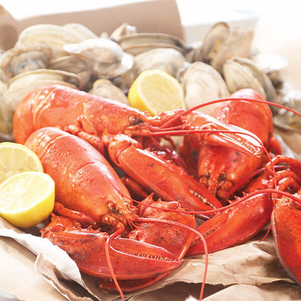 Stonewall Kitchen Set of Four Lobsters