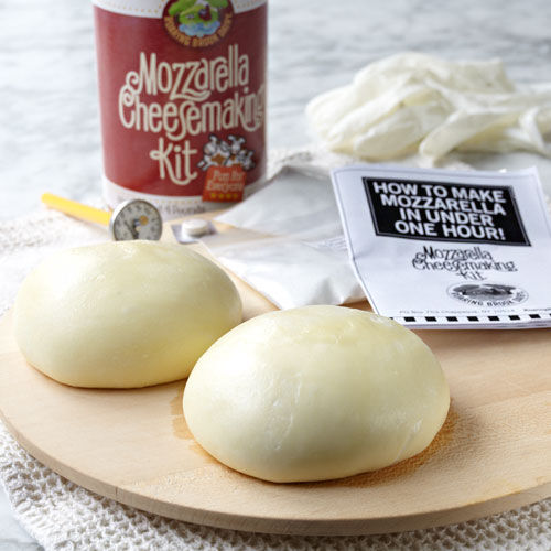 Mozzarella Cheesemaking Kit