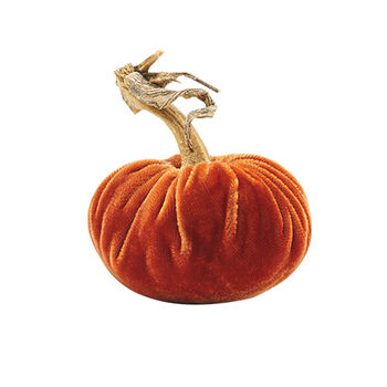 Velvet Pumpkin Collection