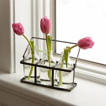 Bud Vase Set with Carrier