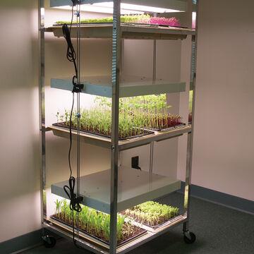 Grow Lights and Carts