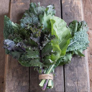 Embrace Kale Diversity