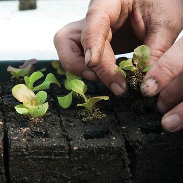 Soil-Block Maker Video