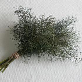 Bronze Herbs for Salad Mix