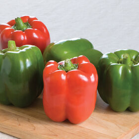 Olympus Sweet Bell Peppers