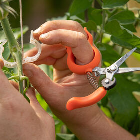 Hands-Free Pruning Scissors - Stainless Steel