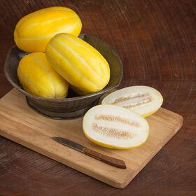Torpedo Asian Melons