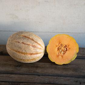 Hannah's Choice Cantaloupe (Muskmelon)