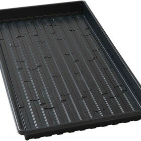 Shallow Black Germination Trays - Pack of 5