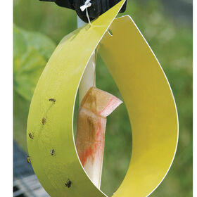 Sticky Yellow Traps - 5 Pack
