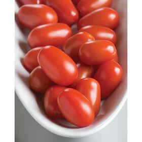 Five Star Grape Grape Tomatoes