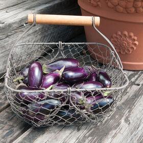 Patio Baby Mini Eggplant
