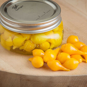 Biquinho Yellow Hot Peppers
