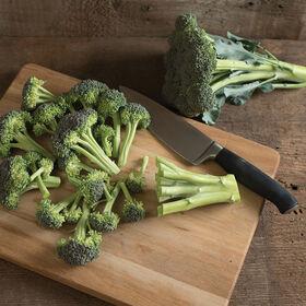 Monflor Standard Broccoli